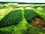 Europe à déjà épuisé ses ressources naturelles