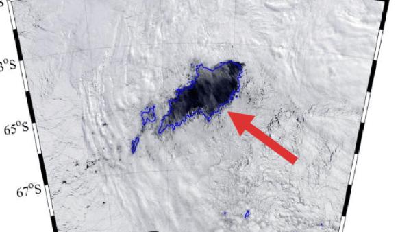 le polynie («eau ouverte») de 80.000 km² en Antarctique, 2017