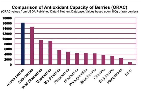 health benefits aronia berries