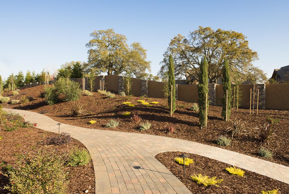 Landscape Design Yuba City Ca