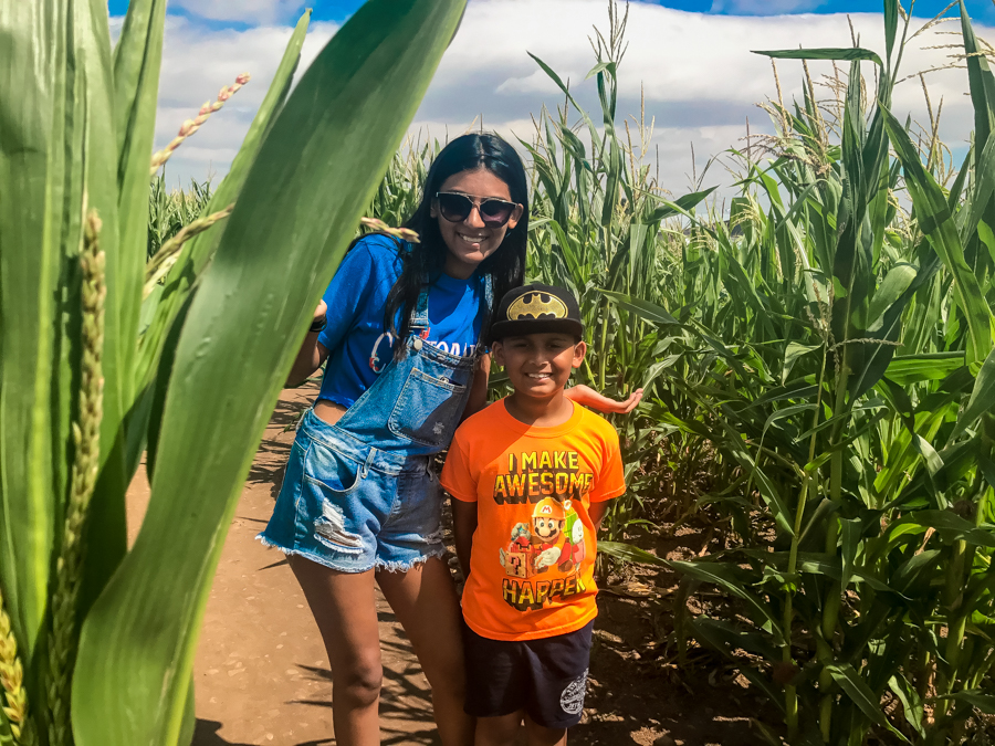 Living Arrows - The kids enjoy the maize