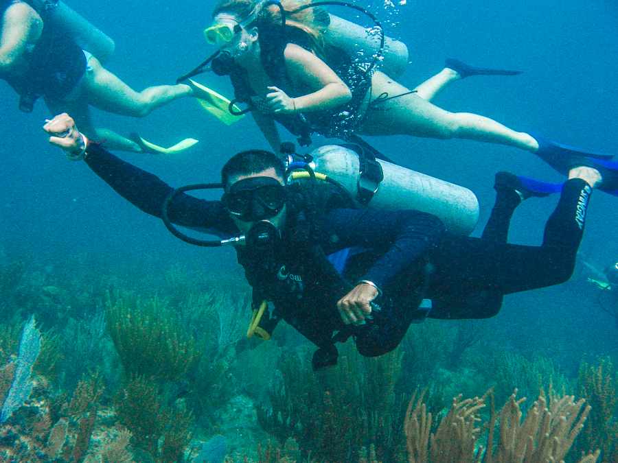 Holiday In Mexico - Sukh Scuba Diving