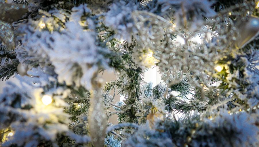 Christmas Poem - Tree