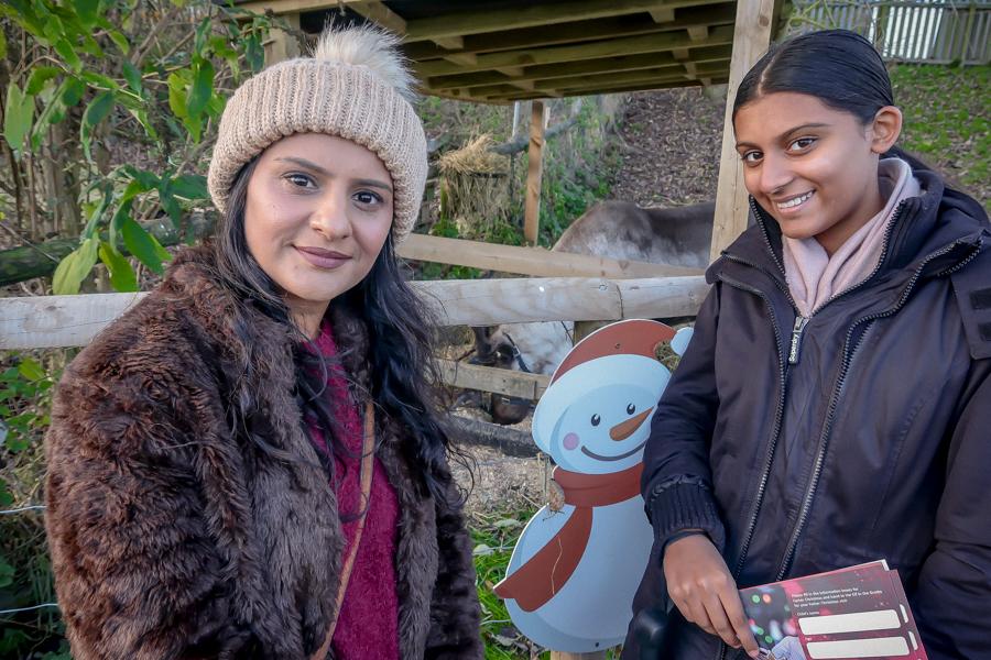 Visiting Santa At Hatton - Reindeer
