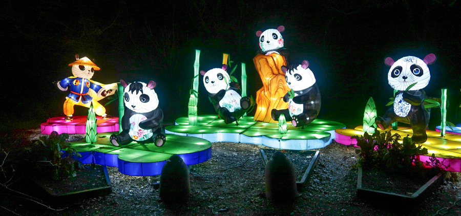 Magical Lantern - Panda Display