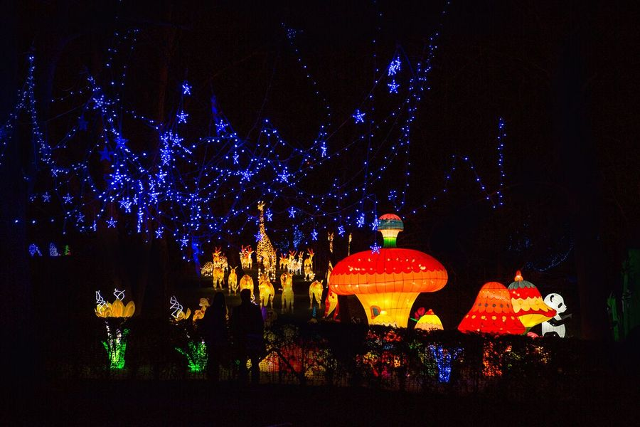 Christmas In My City - Magical Lantern Festival