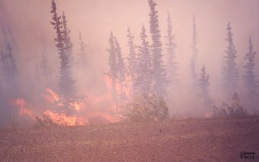Wild fire on the Dalton Highway