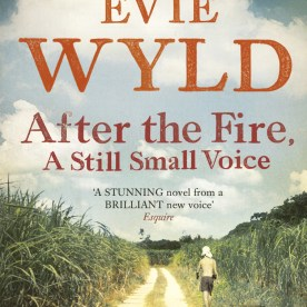 After the Fire, A Still Small Voice (PB)