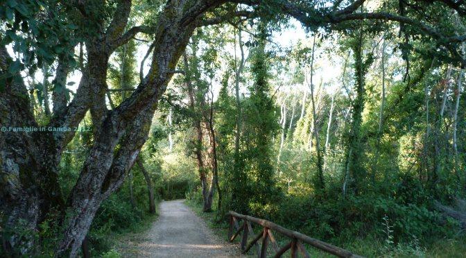 Mare e natura per bambini al Parco di Gianola: itinerario per una vacanza in famiglia