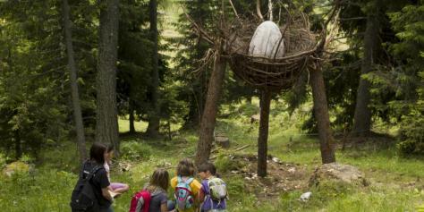 vacanze bambini trentino val-di-fiemme-foresta-dei-draghi