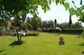 fattoria_poggio_nebbia_tarquinia_prato