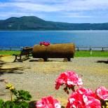 lago_di_vico_riva_verde_vista