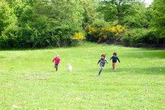 agriturismo_pulicaro_torre_alfina_prati_bambini