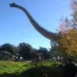 Parco dei dinosauri-Borgo Celano-i giganti