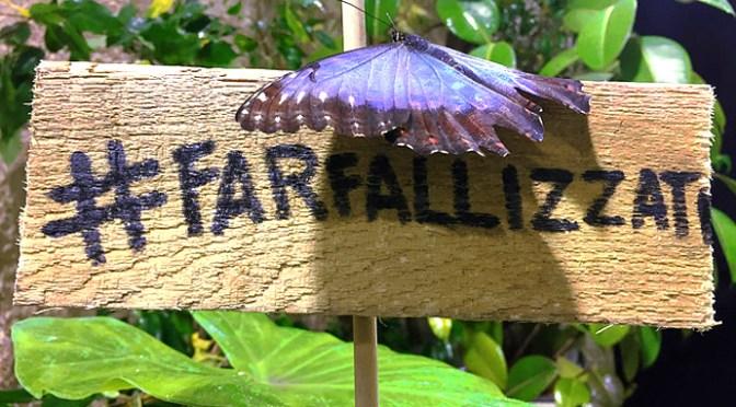 Da Catania a Udine, le più belle Case delle Farfalle da visitare con i bambini