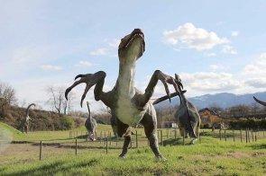 dinosauri_pietre_drago_matelica3