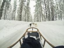 Viaggio in lapponia con i bambini Rovaniemi