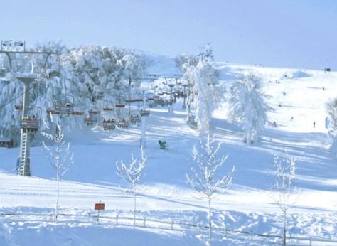 Dove sciare con i bambini in centro Italia marche eremo montecarpegna