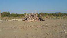 principina spiaggia libera tronchi