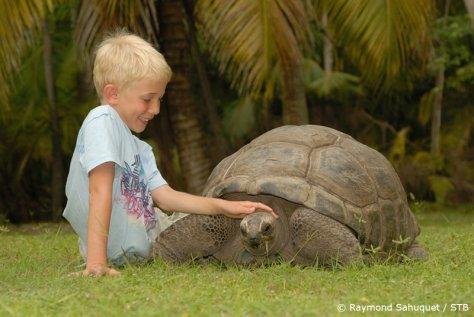 vacanze bambini famiglie Seychelles tartarughe giganti