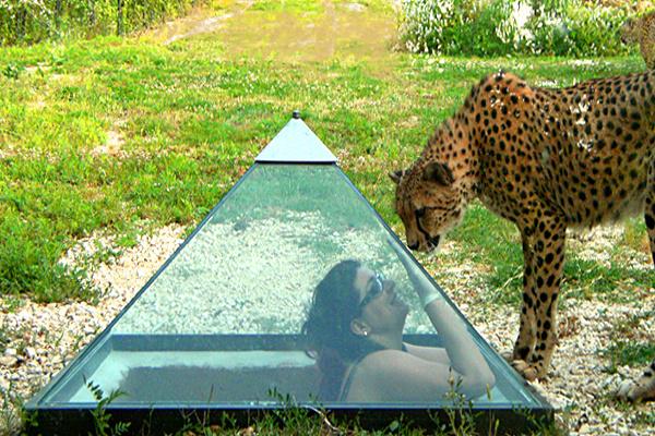 Marche-Zoo Falconara-piramide dei ghepardi