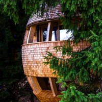 Case sull'albero: tree house, eco lodge, tree hotel per dormire immersi nella natura