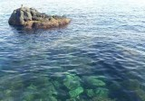 Catania-gita in barca-riviera dei ciclopi-lido del Faro-mare