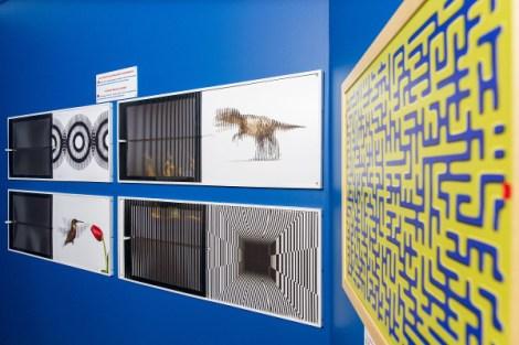 MOOI-museo dele illusioni ottiche-pannelli