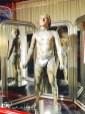 Museo delle curiosità-uomo più tatuato