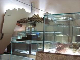 Museo geologico e delle frane_sala_3