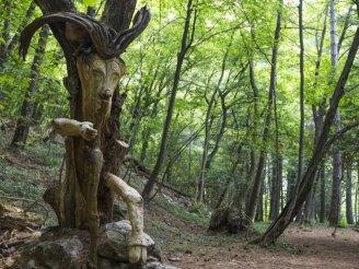 weekend bambini lombardia sentiero dello spirito del bosco