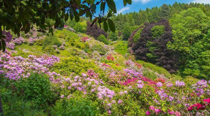 weekend bambini piemonte oasi zegna conca dei rododentri