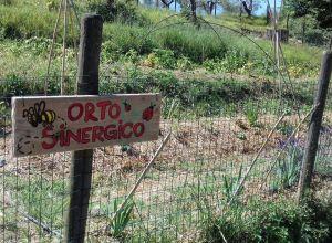 vacanze bambini toscana agriturismo la prugnola orto sinergico