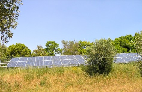 vacanze bambini toscana agriturismo la prugnola fotovoltaico