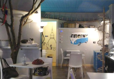 Neko-Cafe-Vicenza-sala-foto-lorenzo-carrus