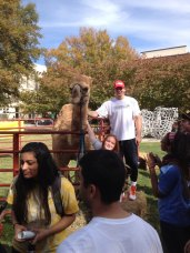 Kirill Pishchalnikov and a camel.