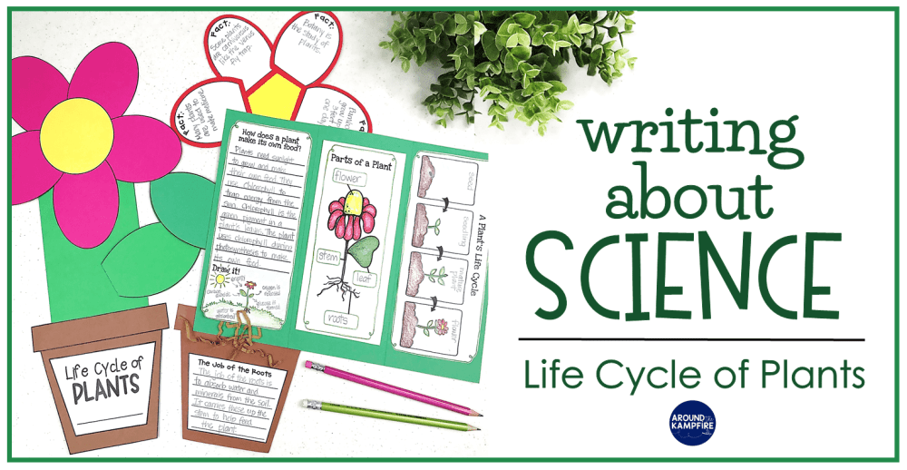 medium resolution of Plant Life Cycle Activities: Writing About Science \u0026 A Freebie - Around the  Kampfire