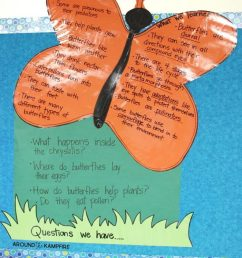 Butterfly Life Cycle Resources \u0026 Free Printables - Around the Kampfire [ 1024 x 791 Pixel ]