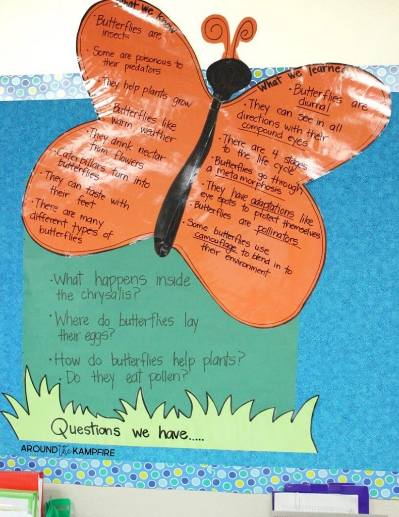 medium resolution of Butterfly Life Cycle Resources \u0026 Free Printables - Around the Kampfire