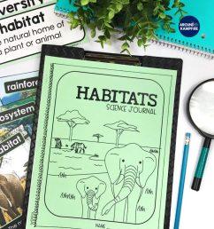 Hands-on Habitats Activities for Second Grade Scientists - Around the  Kampfire [ 1024 x 791 Pixel ]