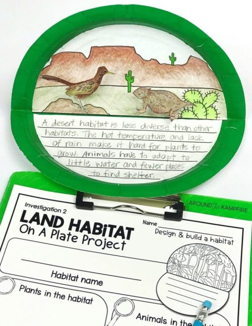 small resolution of Hands-on Habitats Activities for Second Grade Scientists - Around the  Kampfire