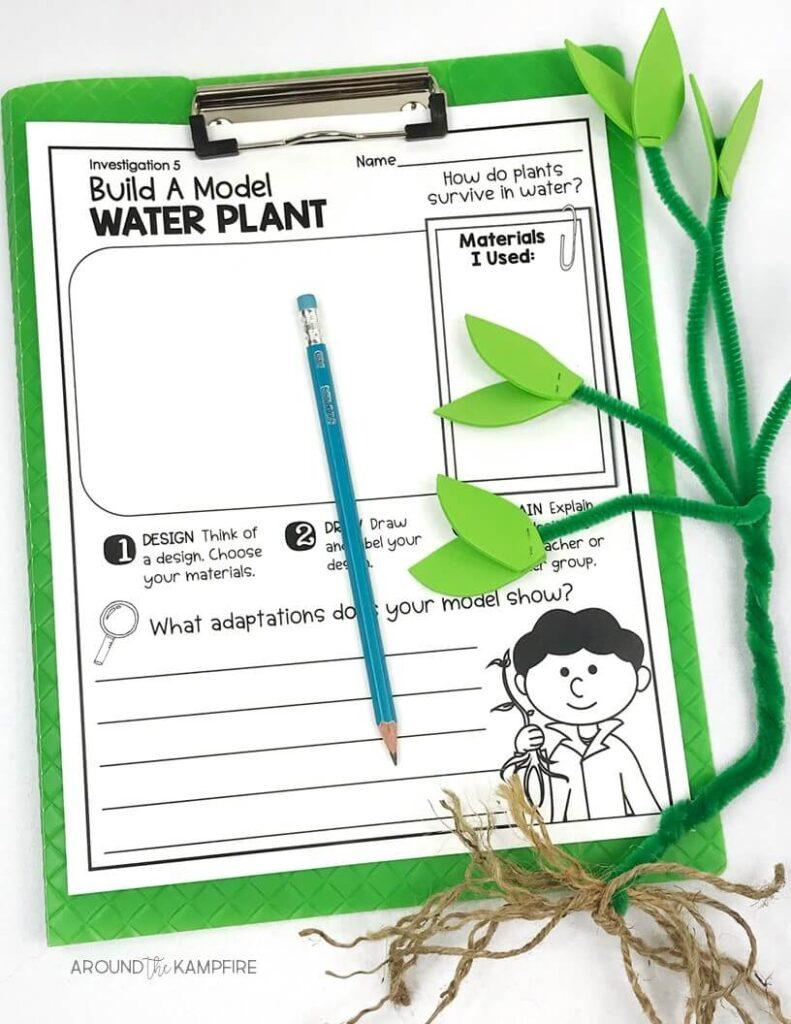 medium resolution of Hands-on Habitats Activities for Second Grade Scientists - Around the  Kampfire