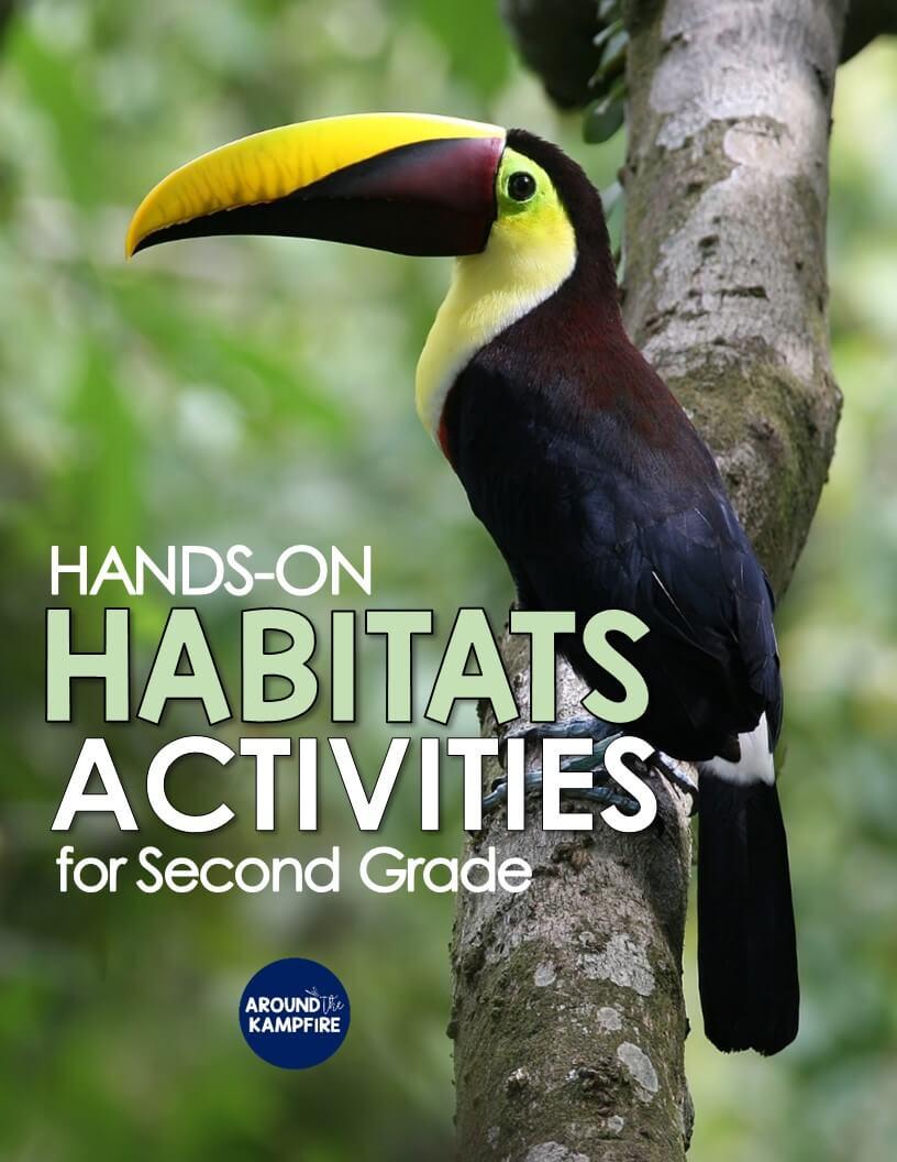 hight resolution of Hands-on Habitats Activities for Second Grade Scientists - Around the  Kampfire