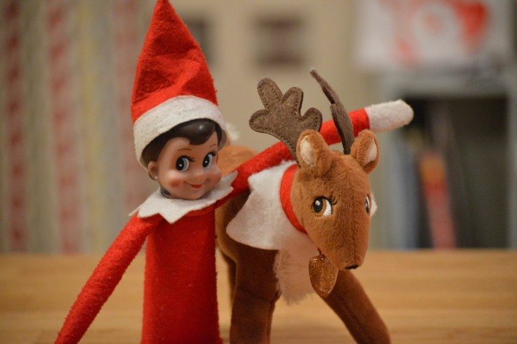Jingles the Elf with her furry reindeer friend