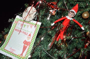Jingles the Elf hiding in the Christmas tree at the Callaghan household