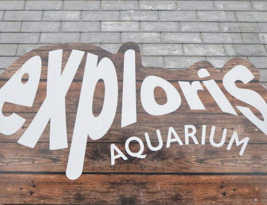 Exploris Aquarium and Reptile Centre in Portaferry, Northern Ireland