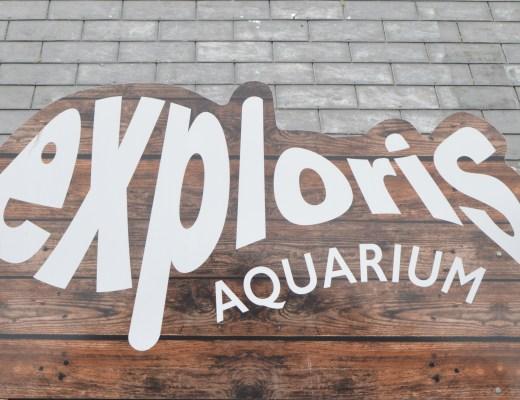 Exploris Aquarium and Reptile Centre in Portaferry, Northern Ireland