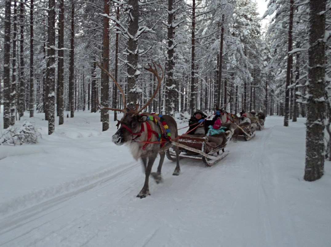 A reindeer sleigh ride through snowy forests at Santa Claus Holiday Village in Rovaniemi, Finland