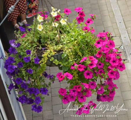 Omagh Food Festival - vibrant hanging baskets