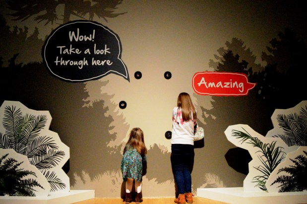 Catching a glimpse of Dippy the Dinosaur at the Ulster Museum in Belfast